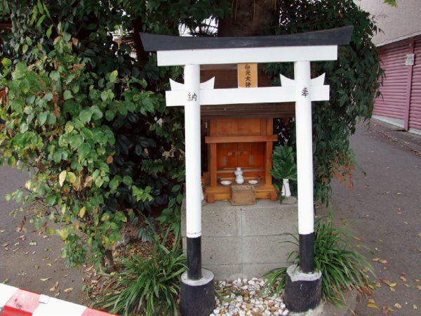 Tamatsukuri Inari Shrine Enoki Daimyojin