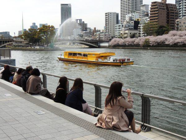 水都大阪 川開き 2015 はちけんやお花見フェスタ