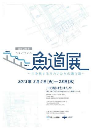 巡回企画展『魚道展 川を旅するサカナたちの通り道』