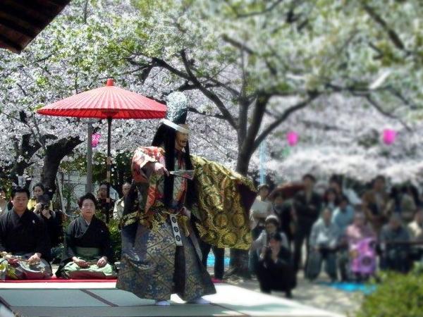【桜まつりお茶会】中大江公園