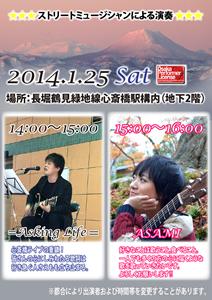 ストリートミュージシャンによる演奏 (2014/01)