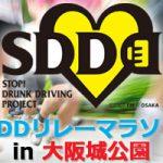 SDDリレーマラソン in 大阪城公園