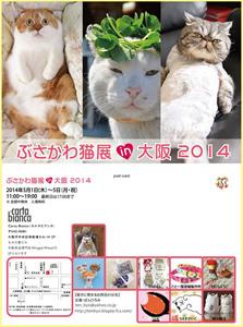 ぶさかわ猫展in大阪2014