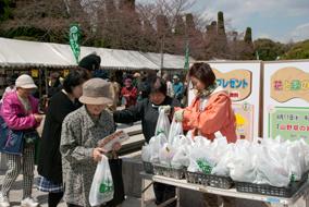 平成31年「春の植木市」