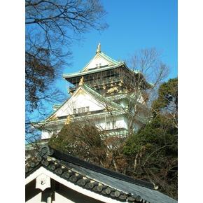 【大阪あそ歩'14秋】大坂城徹底探訪~築城前後から現在へ、数奇な城の歴史を~