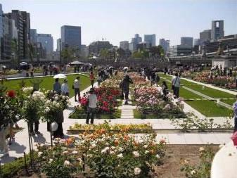 中之島公園バラ園 2017春のローズツアー