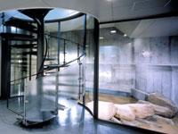 大阪歴史博物館「古代の石組み水路 特別公開」
