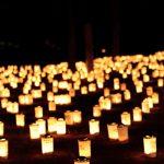 【大坂の陣400年天下一祭 夏の陣】大坂城 天下泰平の灯
