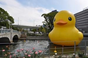 水都大阪フェス2015 「ラバー・ダック」展示