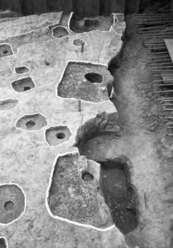 大阪歴史博物館 常設展示「後期難波宮でみつかった奈良時代の柱根」