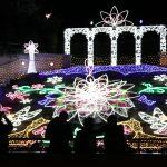 冬のイルミネーション - Winter Illumination 2017