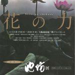 映画「花戦さ」製作記念 いけばなの根源 池坊展