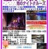 大阪ダックツアー 御堂筋イルミネーションと光のナイトクルーズ(臨時便)