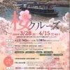 ひまわり 桜スペシャルクルーズ