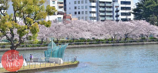 水都大阪川開き2018 はちけんやお花見フェスタ