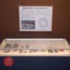 大阪歴史博物館 常設展示「長原206号墳~地下に眠る長原古墳群の一例~」