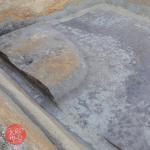 長原古墳群の近年の発掘調査成果 写真展