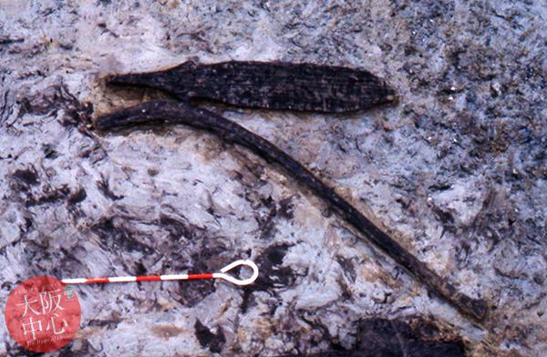 長原遺跡で見つかった古代の農具