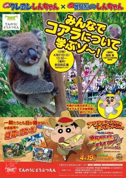 クレヨンしんちゃん×獣医のしんちゃん みんなでコアラについて学ぶゾ~!