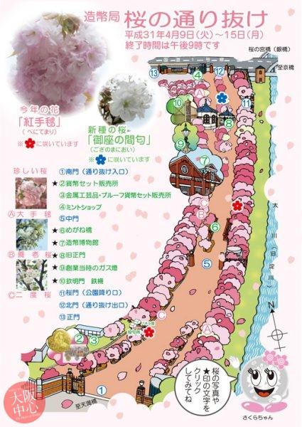 大阪造幣局 桜の通り抜け2019