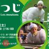 ひつじ Les moutons