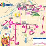 第9回大阪マラソン