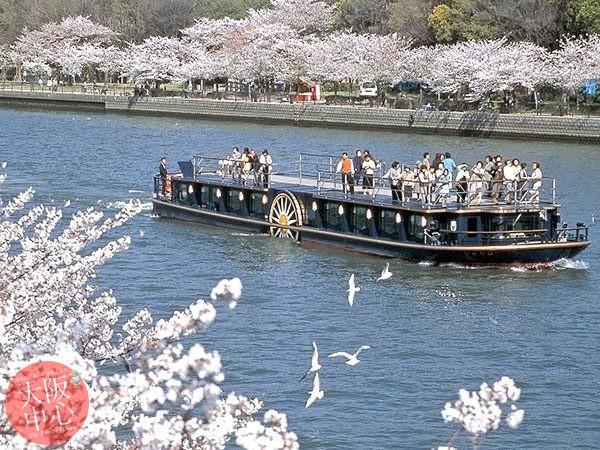 ひまわり 桜スペシャルクルーズ2020