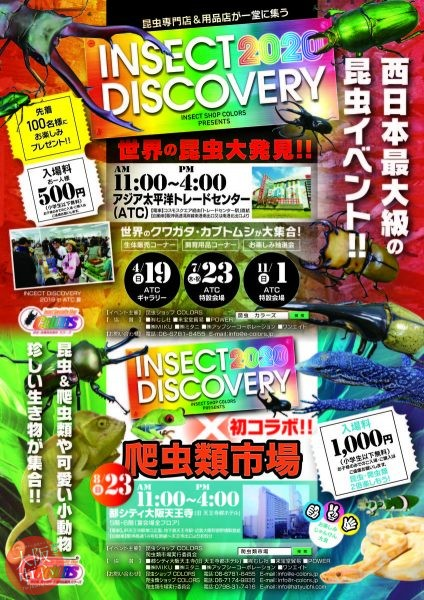 INSECT DISCOVERY 2020
