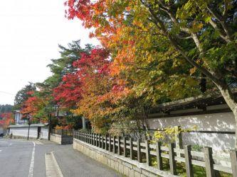 高野山街道沿い紅葉